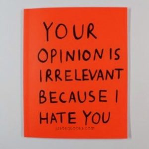 Your opinion is irrelevant because I hate you