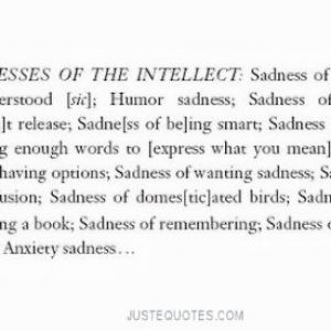 Sadnesses of the intellect: Sadness of being misunderstood