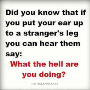Did you know that if you put your ear up to a stranger's leg …