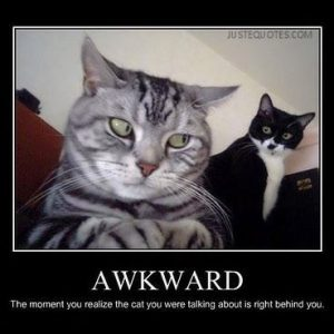 Awkward the moment you realize the cat you were talking about is right behind you.