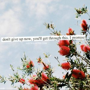Don't give up now, you'll get through this. I promise.