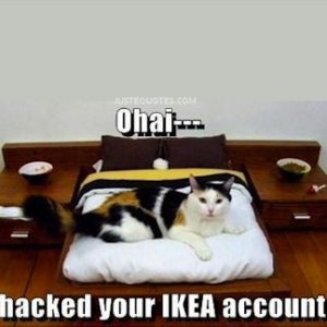 Ohai — I hacked your Ikea account